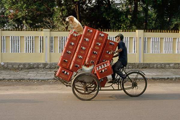 beer-delivery-bicycle.jpg